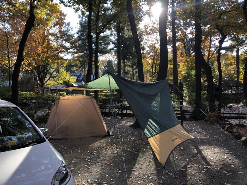 キャンプアンドキャビンズサイト2