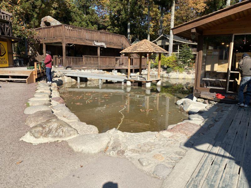 キャンプアンドキャビンズ池